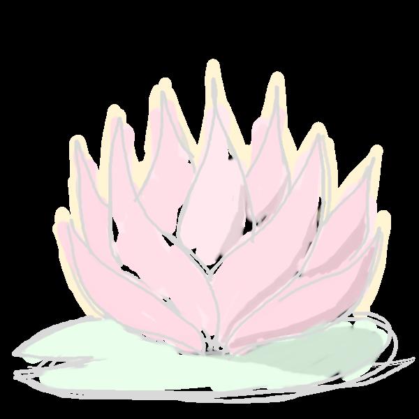 layout/static/imgs/lotusflower.png